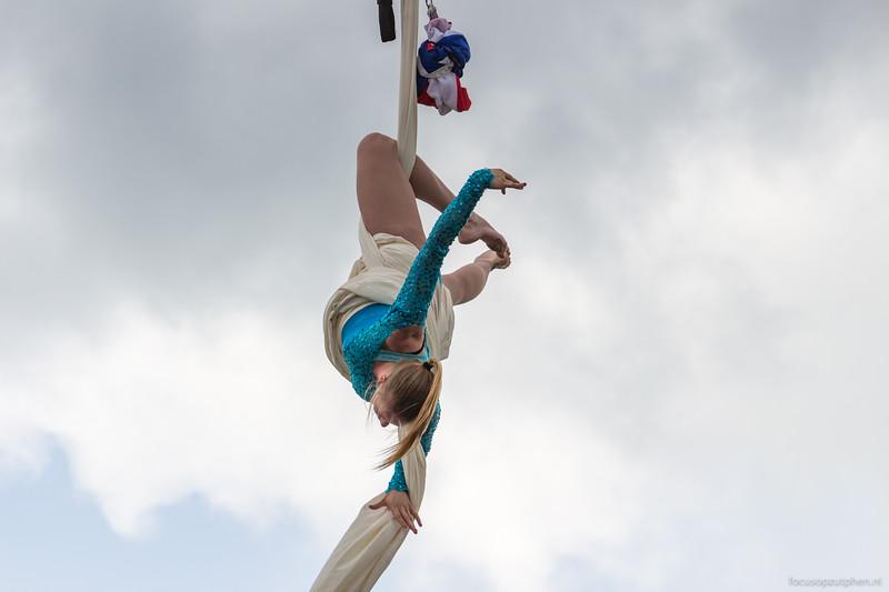Knap staaltje acrobatiek