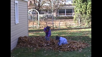 Shoveling Leaves