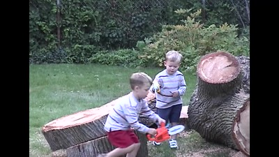 Cutting Up the Maple
