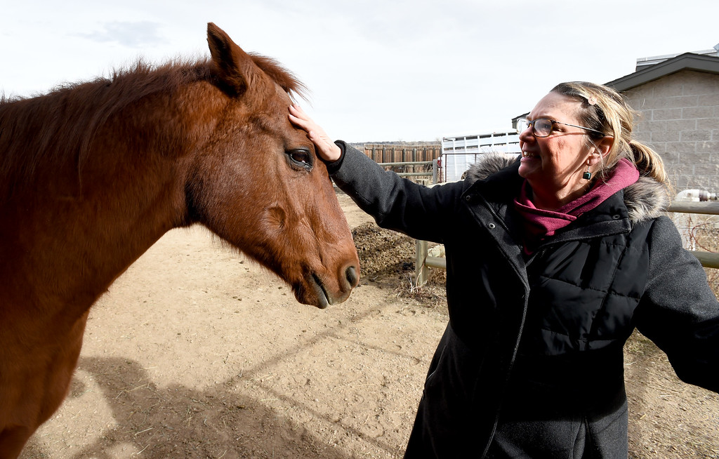 . Julie Johnson, who tends to Boulder\'s one remaining horse - a holdover from the days when open space rangers patrolled the land on horseback  was visiting with Jack, the horse, as she does on a daily basis.  Cliff Grassmick  Photographer  February 8, 2018