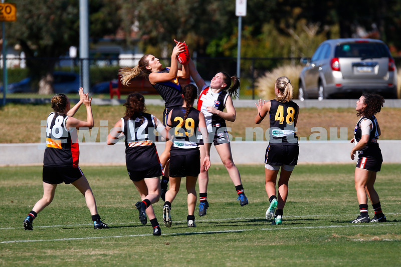 7-4-18. Round 1 at Princes Park.  Jackettes defeated Old Carey. 5.3-34 to 0.8-8. Photo: Peter Haskin
