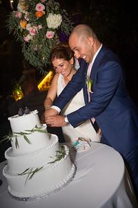 Reception Cake cut0008