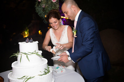 Reception Cake cut0012
