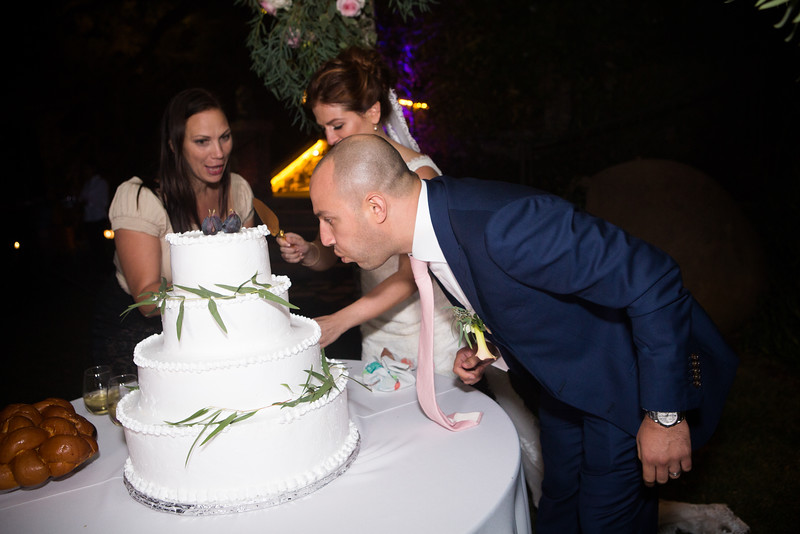 Reception Cake cut0002