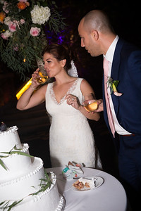 Reception Cake cut0018