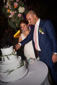 Reception Cake cut0007