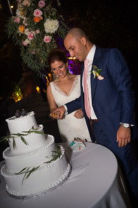 Reception Cake cut0005