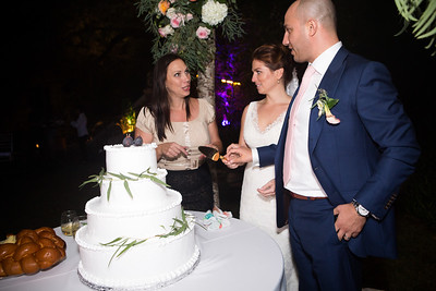 Reception Cake cut0001