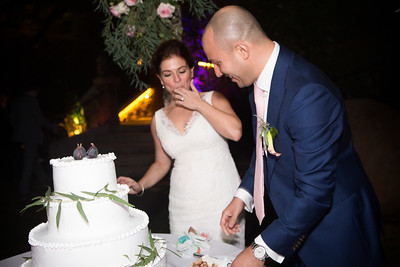 Reception Cake cut0014