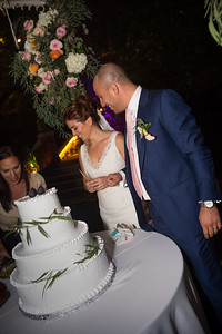 Reception Cake cut0004