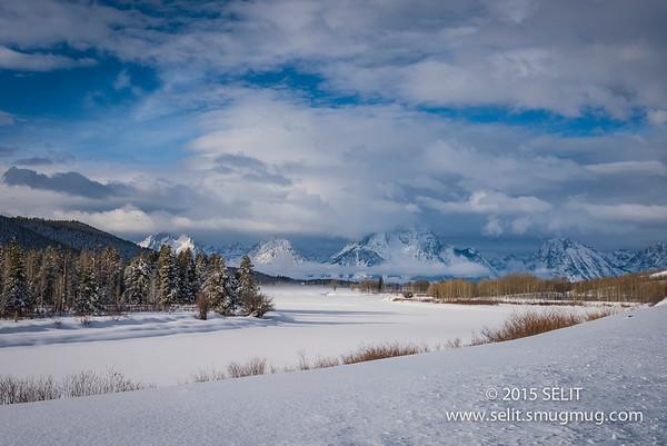 Jackson Hole 2015 Winter Wild Life Photo Safari