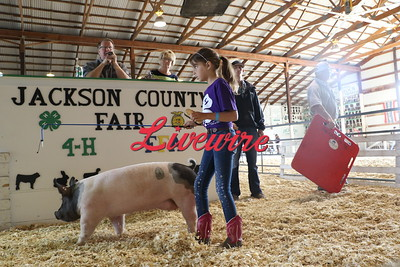 2018 Fair Livestock Auction