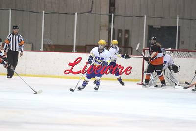Hockey vs Marshall 1-23-17