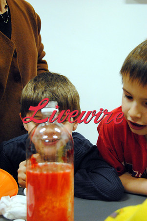 Library Science Fun 006