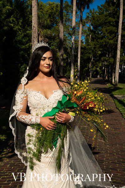 Alyssa and Brandon Wedding - March 2020