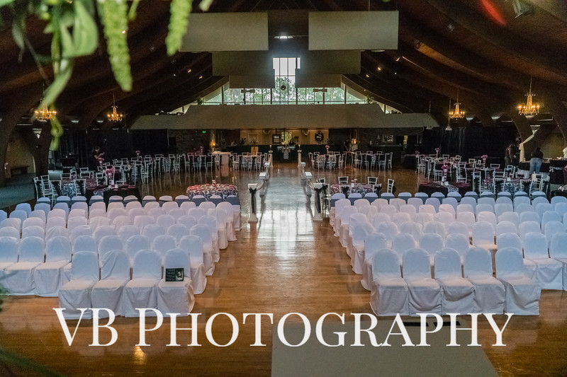 Krystal and Damaian wedding - July 2018-1