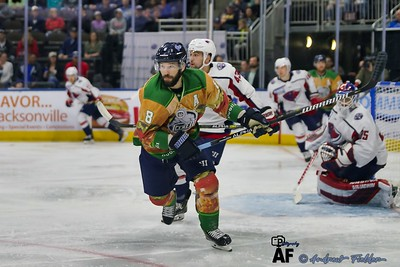 Jacksonville Icemen Vs South Carolina Stingrays