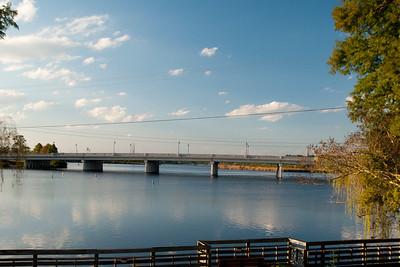 Buddy Phillips Bridge1
