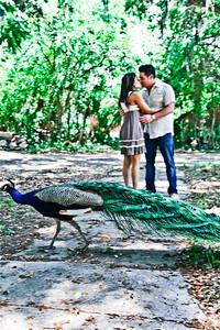 Brandi is booking 2012 Weddings Visit:  http://www.brandihill.com/Photography_by_Brandi_Hill/Home.html