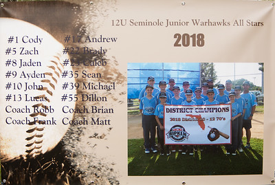 Jaden State Tournament Baseball July 2018