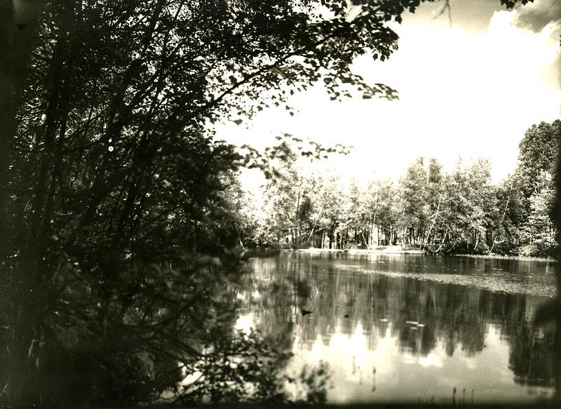234-Photo-Water-scene-WEB