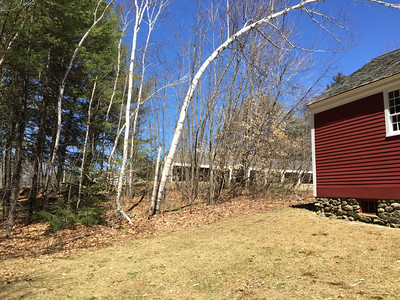 Rear of Little Redschoolhouse with Horsesheds beyond, April 15, 2015.