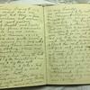 Dr Sweeney's diary.