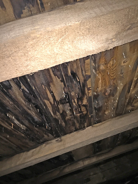 Underside of roof. One can see underside of shingles through joints of sheathing. Also, some building paper. Shingles are somewhat elevated so confirms stopping was installed for nailers. August 11, 2015.