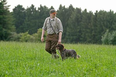 Training zur Jagdgebrauchshundeprüfung im EN-Kreis