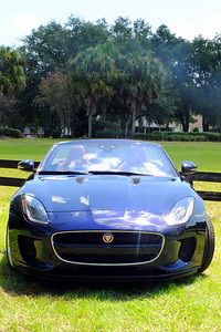 F-Types are known to run circles around Porshes and most other sports cars.