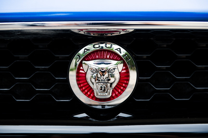 Jaguar-Umlauf-002