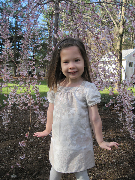 Our new weeping cherry in bloom -  April 2012<br /> Kylie age 3 1/2 yr.