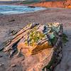 jalama beach 1346-