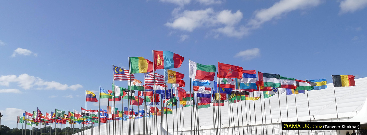 There are just loads of flags because so many countries are being represented here at the Jalsa.