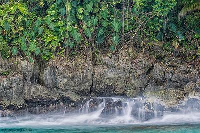 Rugged Shoreline in Port Antonio Adorned with Lush Tropical Plant-life, Jamaica