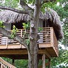 Couples Negril treehouse massage hut.<br /> <br /> For more inforation on Couples Negril or any of the Couples resorts, please contact Romance@SandnSunvacations.com