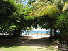 Beach Wedding Arch, lots of shade for guests- Grand Lido Braco, Jamaica
