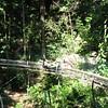 Mystic Mountain- bobsledding through the rainforest