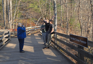 Our hikers and Mike.   The previous photo of the falls was shot looking downstream from the bridge where the guys are standing.