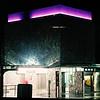 Oregon  Zoo Lights<br /> Fuji NPS 160<br /> December 2004