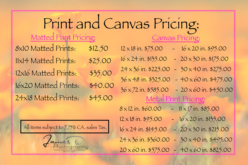 2020 Pricing for Prints