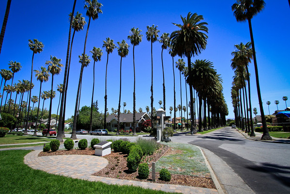 928 Plaza Drive, San Jose