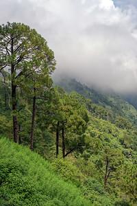 Vaishno Devi Trip Katra, Jammu & Kashmir, India