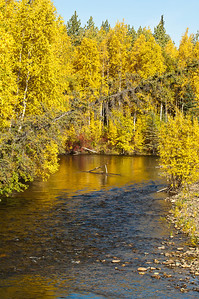 Dalton Highway, Creek, Fall Colors