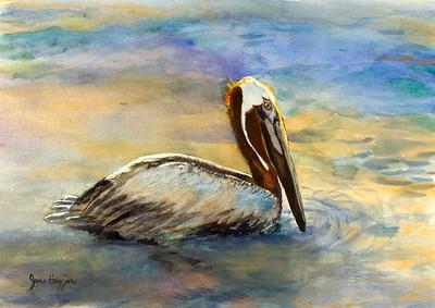 pelican meditation