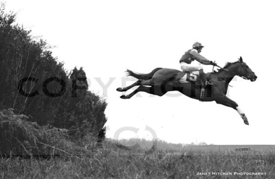 flying horsetx