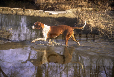 hound crossing creek copy copy
