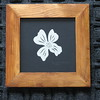 """Title: """"Dogwood"""" - Framed Hand Cut Parchment - Janet's Original Design<br /> Size: 5x5<br /> Price:$10  Plus Tax -S&H<br /> Email Your Order: JanetLynchArt@gmail.com"""