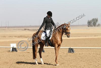 Sintra_012514_0106