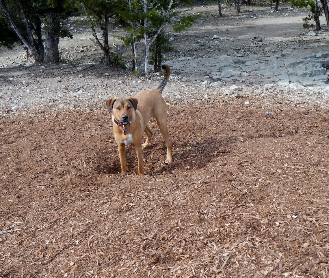 Spartacus found a hole